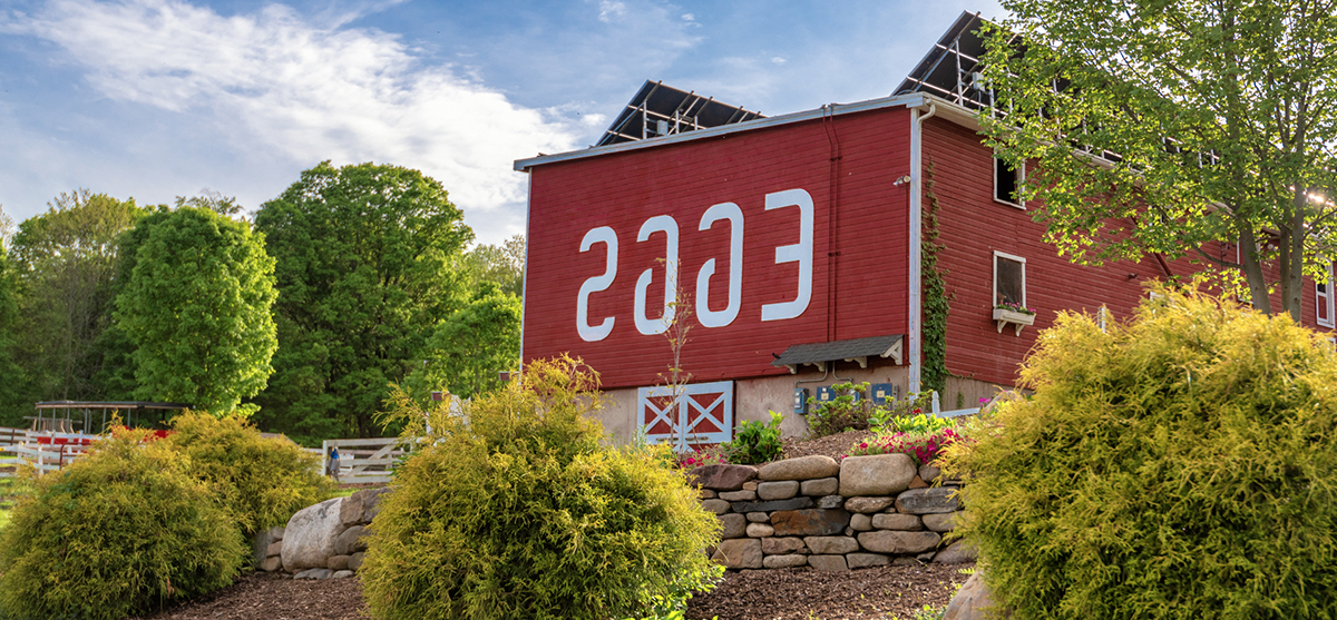 Flamig Farm Red Barn With Backwards Eggs Sign