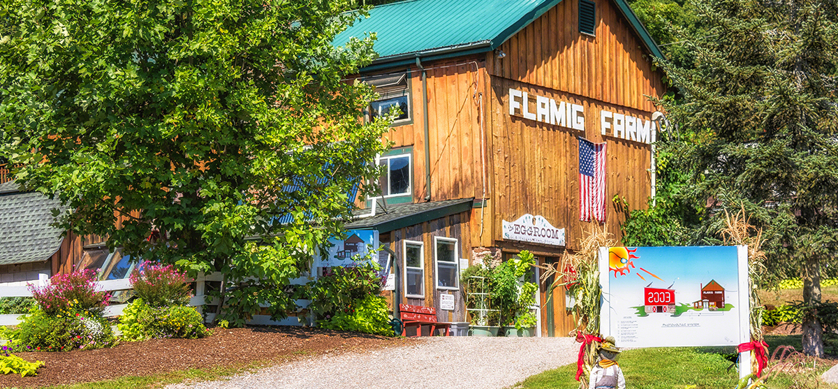 Flamig Farm Store