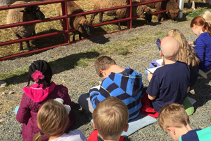 Flamig Farm School Tours