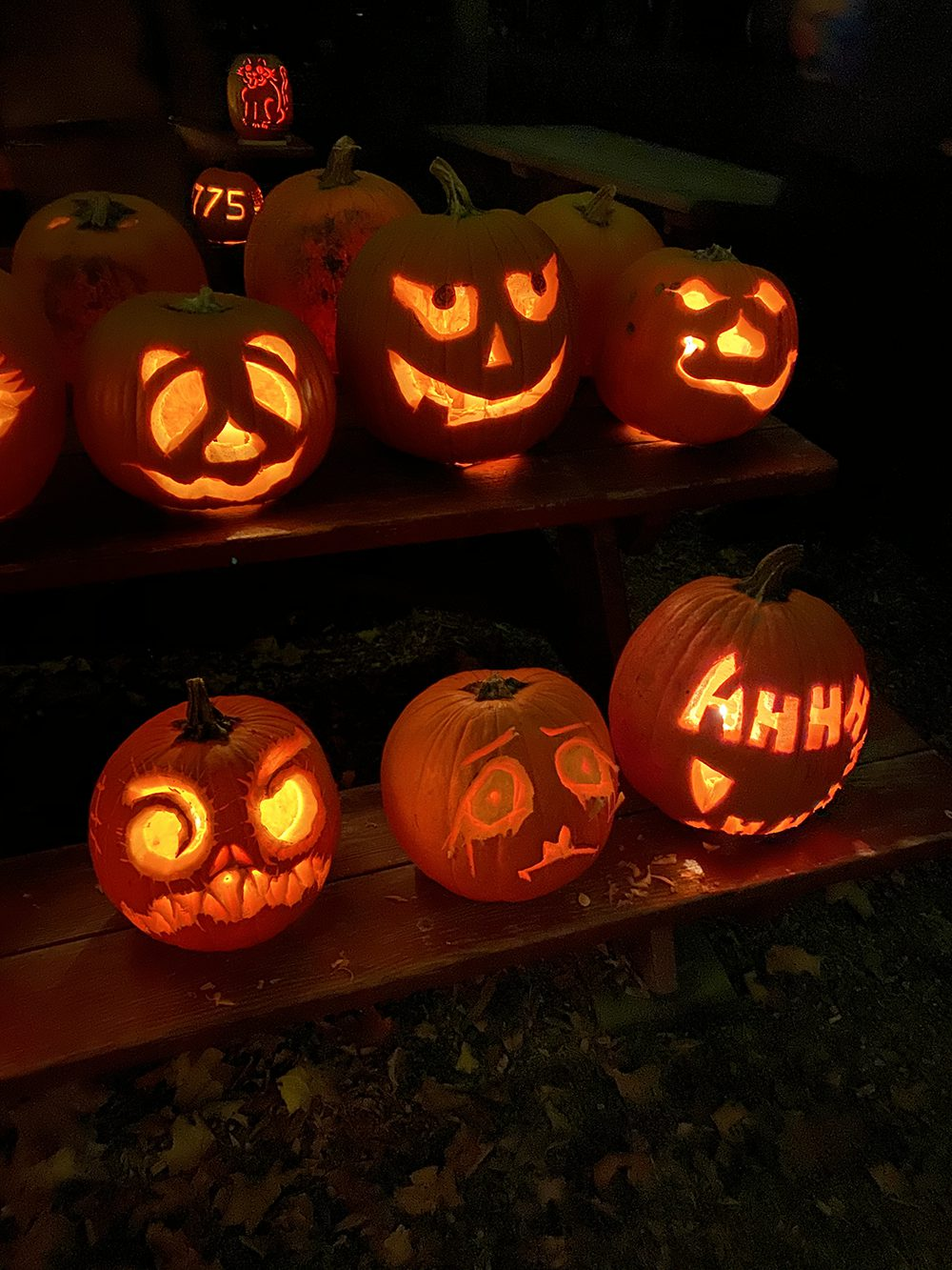 Jack O' Lanterns at the Halloweeen Hayride at Flamig Farm in Simsbury CT