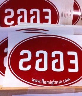 Oval Bumper Sticker