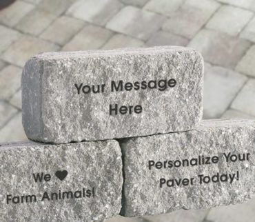 Paver for Our Walkway