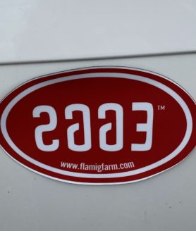 Flamig Farm Eggs car magnet