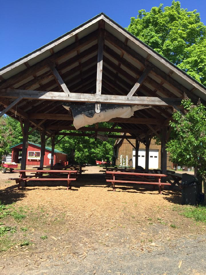Flamig Farm pavillion for birthday parties